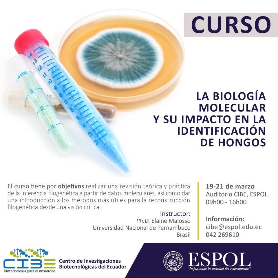 Curso: La biología molecular y su impacto en la identificación de hongos