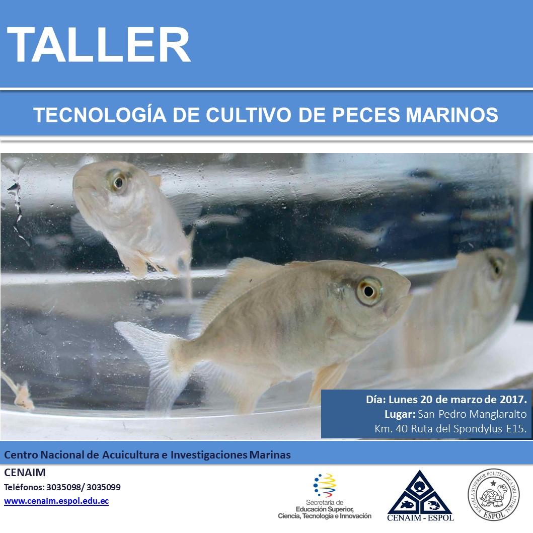 Taller Tecnología de Cultivo de Peces Marinos